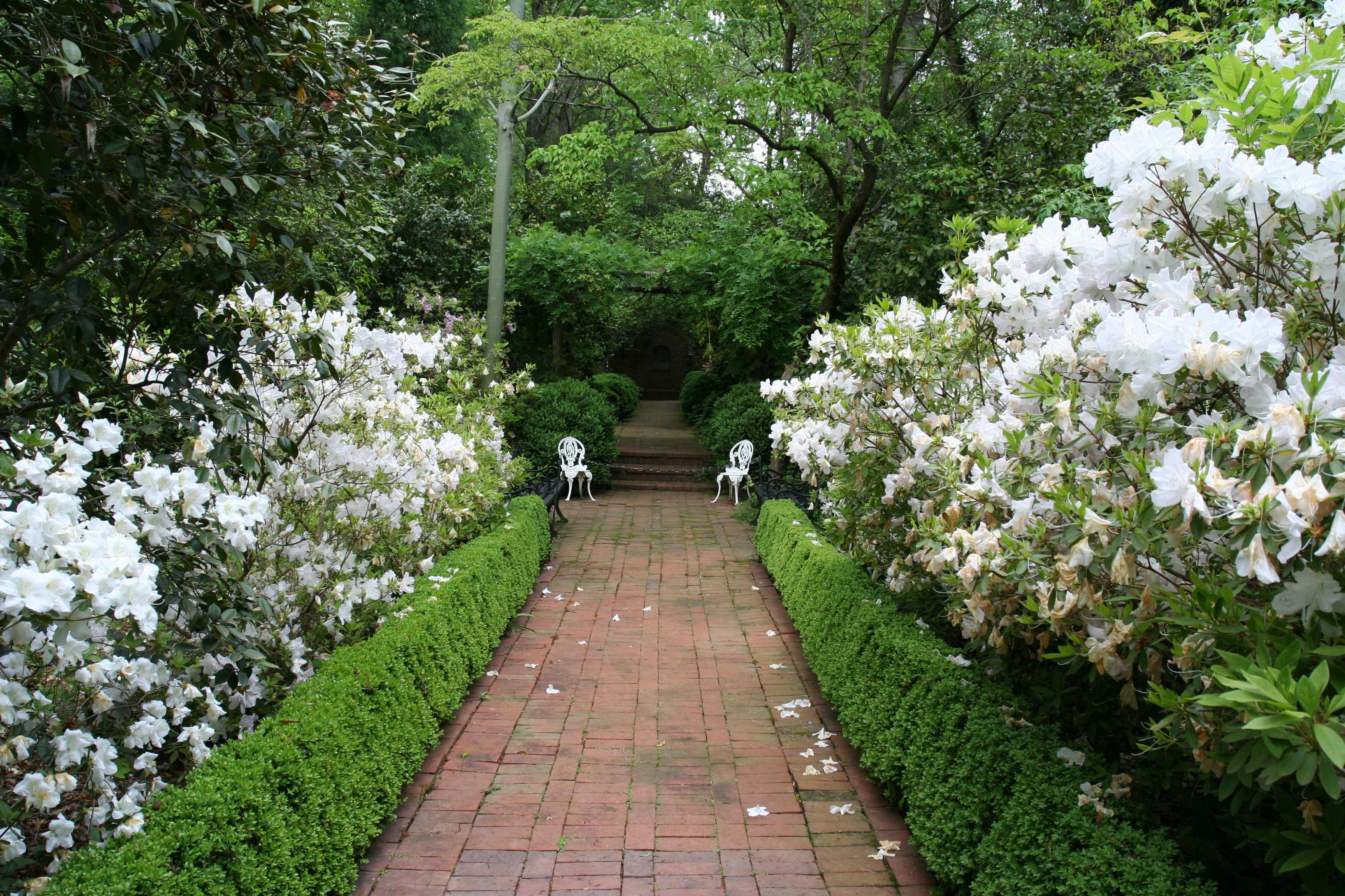 Wing haven share charlotte - Wing haven gardens and bird sanctuary ...
